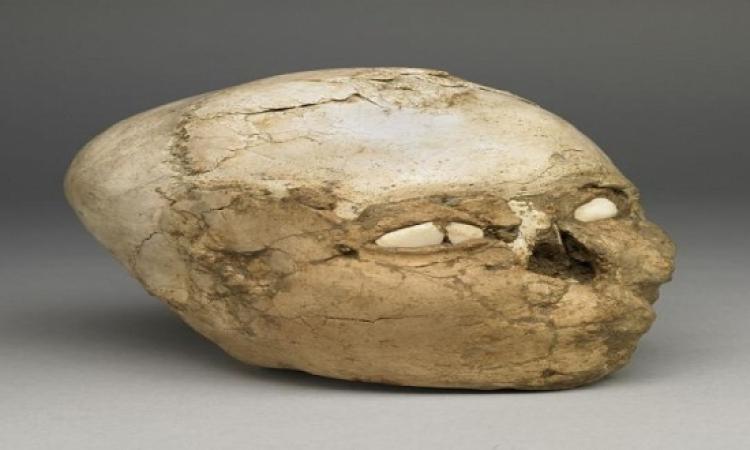 كيف كانت ملامح الإنسان قبل 95 قرن؟!