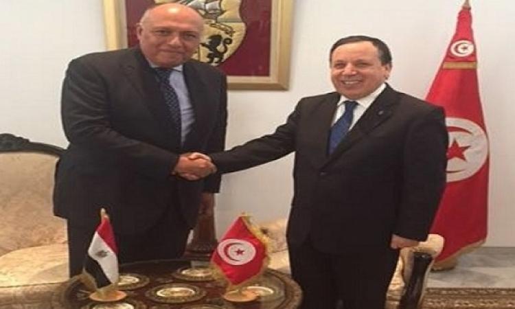 شكرى يصل إلى تونس لنقل رسالة شفهية من السيسى إلى السبسى