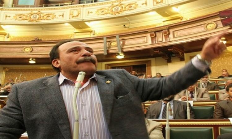 """""""رئيس القوى العاملة بالبرلمان"""" يزف بشرى سارة للمصريين"""