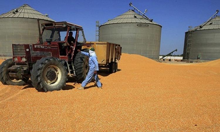 رفع طاقة تخزين صوامع القمح إلى 3.13 مليون طن