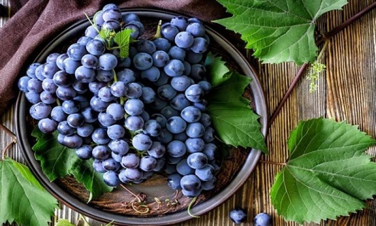 فوائد صحية هائلة للعنب الأزرق
