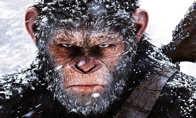 """""""War for the Planet of the Apes"""" يتربع على القمة بـ102 مليون دولار"""