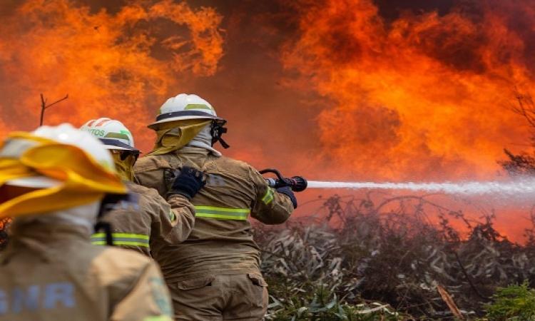 إيطالي يشعل الحرائق لكسب المال عند إخمادها بصقلية الإيطالية