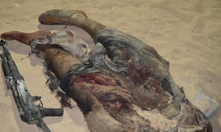 بالصور .. مقتل تكفيريين فى إحباط هجوم إرهابى على نقطة أمنية بمدينة العريش
