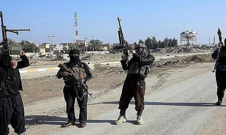 داعش يشن هجوماً مباغتاً ويستعيد السيطرة على 4 قرى فى ريف حماة