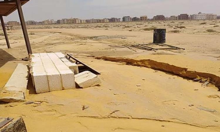 كائنات غير معتادة قد تهدد القاهرة الجديدة.. والبيئة تطلب الإبلاغ عنها