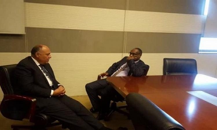 اجتماع تشاورى بين شكرى ونظيره السودانى بأديس أبابا