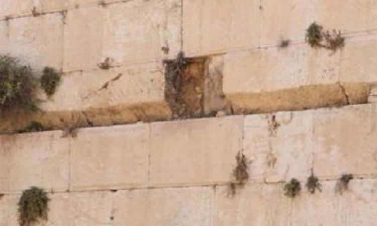 إغلاق قسما من حائط البراق بالقدس بعد سقوط حجر كبير يزن 100 كجم