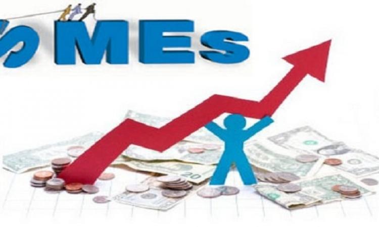 المركزى يصدر تعريفا لشركات الـ SMEs المملوكة للمرأة