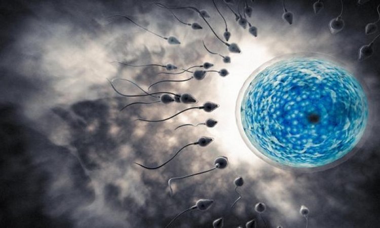 علاج العقم بالخلايا الجذعية