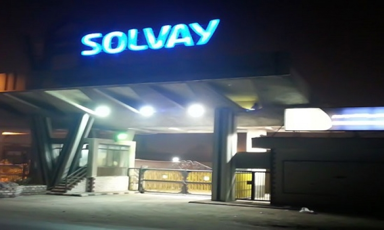 """3 شركات حكومية تستحوذ على """"سولفاي الإسكندرية"""" مقابل 15 مليون دولار"""