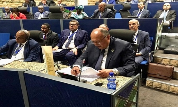 شكرى يُشارك فى اجتماع لجنة الاتحاد الأفريقي رفيعة المستوى حول ليبيا