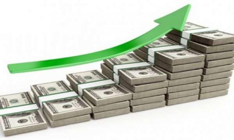 الحكومة تستهدف 9 مليارات دولار استثمارات أجنبية مباشرة العام المالي المقبل