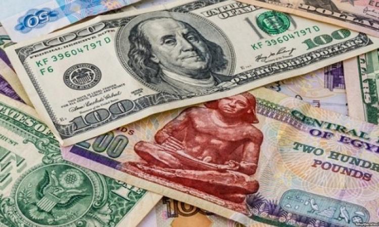 فوكس إيكونوميكس : الدولار سيتجاوز 18 جنيها فى 2020