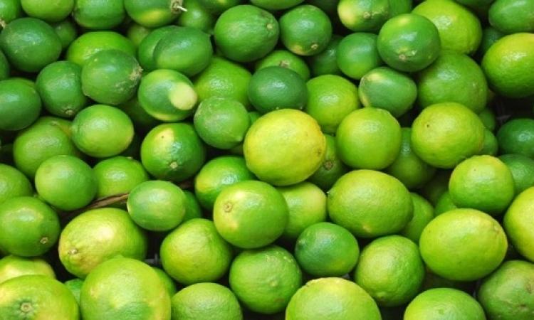 قفزة فى صادرات الليمون تزامنا مع ارتفاع أسعاره