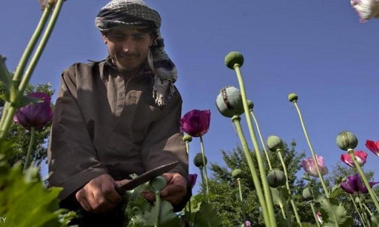 كيف مولت طالبان حربها في أفغانستان خلال 20 عاماً ؟