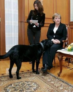 ميركل والكلب