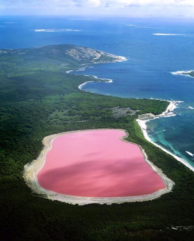 البحيرة الوردية (1)