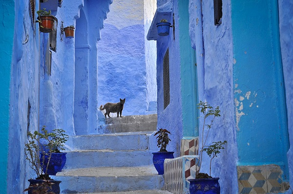 القرية الزرقاء  2