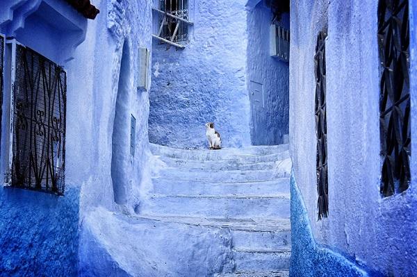القرية الزرقاء 4