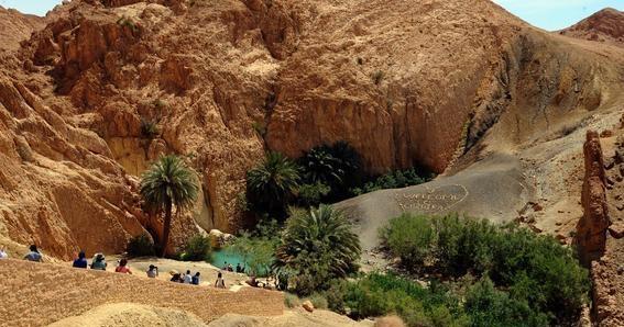 TUNISIA-TOURISM-NATURE-OASIS-THEME-WATER
