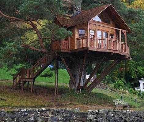 tree-house-2-470-1108