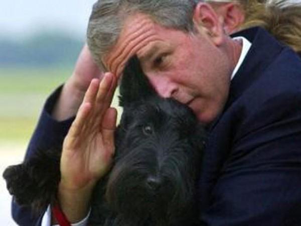 جورج بوش و كلبه