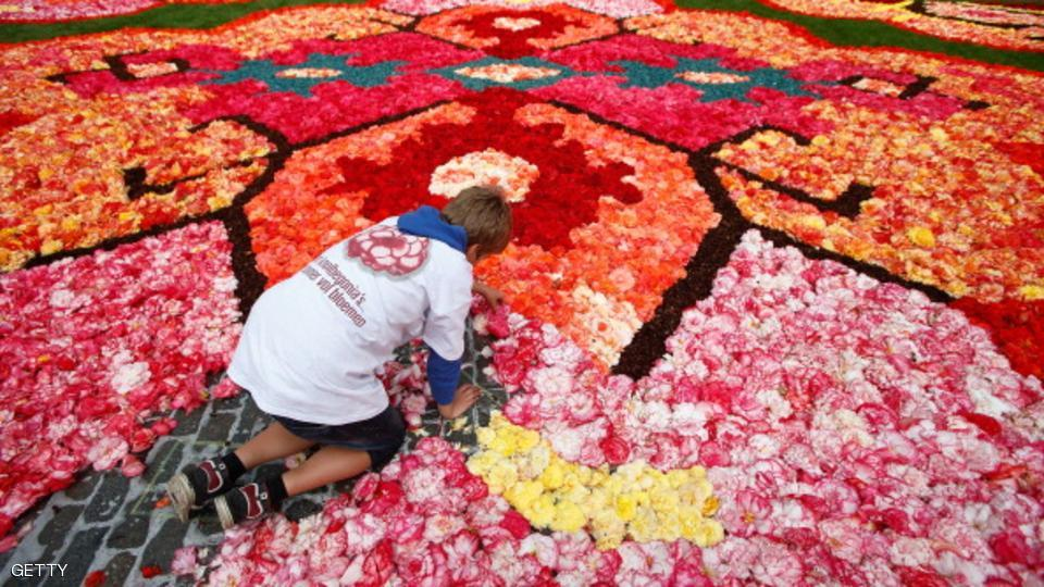 Flower Carpet 2014 In Brussels