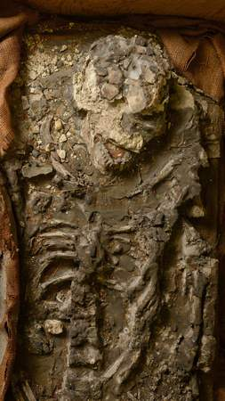 chi-skeleton-penn-museum-20140806