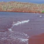 أجمل الشواطى الملونة فى العالم