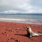 amazing-unusual-beaches-10-1