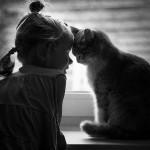 أطفال و قطط
