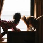 أطفال وقطط
