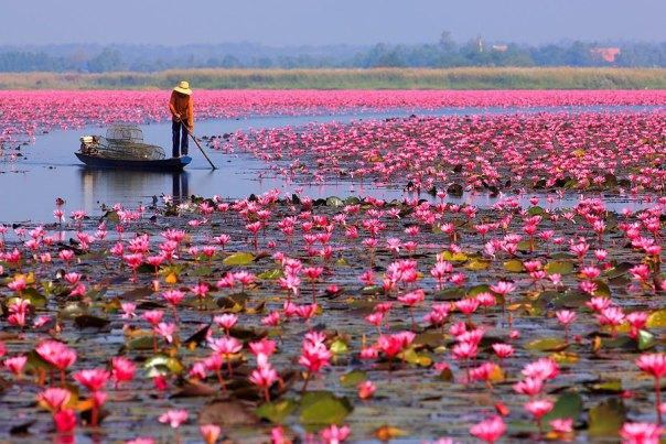بحيرة نونج هارن