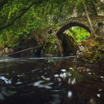 جسر الهيرميتاج - اسكتلندا