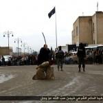 داعش6