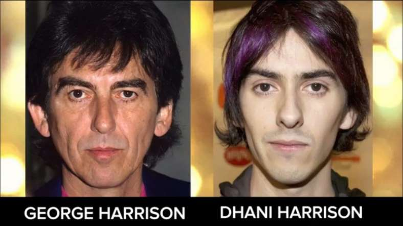 دانى هاريسون