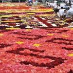 سجادة زهور