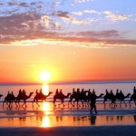 سحر المملكة المغربية