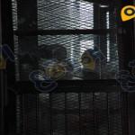 صور-غرفة-عمليات-رابعه-معهد-امناء-الشرطه14