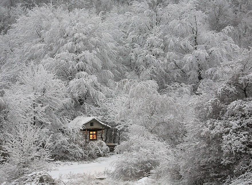 كوخ فى الشتاء