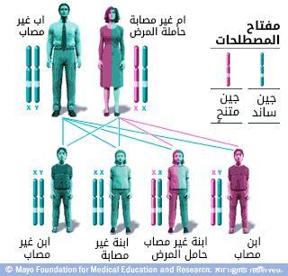 نمط وراثى متعلق بكروموزوم X مع أم حاملة