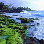 هاواى