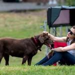 آن هاثاواي وكلبها