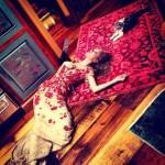 تايلور سويفت مع قطتها