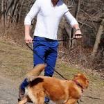 ريان رينولدز مع كلبه في نزهة