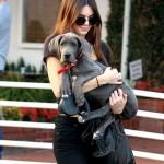 كيندال جينير مع كلبها الأنيق