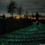 141113115707_glow-path-4(1)