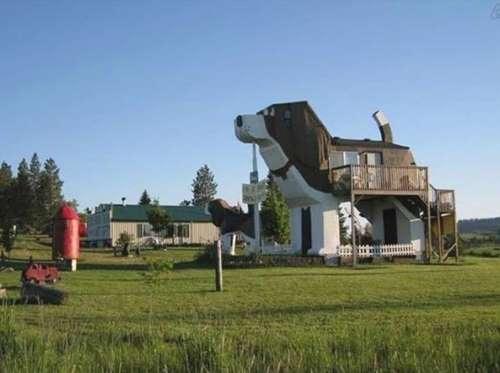 منزل على شكل كلب
