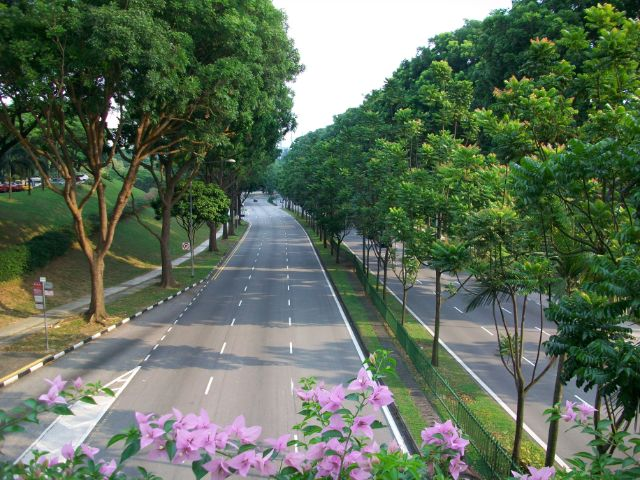 شارع البستان سنغافورة
